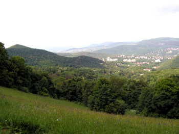Buda Hills – hiking, fresh air, lots of green